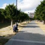 Reparación e instalación de farolas y alumbrado público